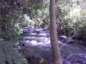 Thika River