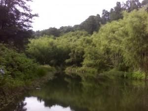 Thika River Wier
