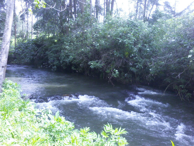 Southern Mathioya
